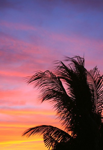 pink sunset sky colors clouds florida atmosphere