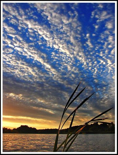sunset sky lake clouds evening bravo searchthebest latvia latvian helluva naturesfinest supershot marikate outstandingshots abigfave p1f1 anawesomeshot impressedbeauty superaplus aplusphoto ultimateshot flickrplatinum 200750plusfaves 200750plusfavesjanuarycontest 200750plusfavesvotingopen goldenphotographer superhearts