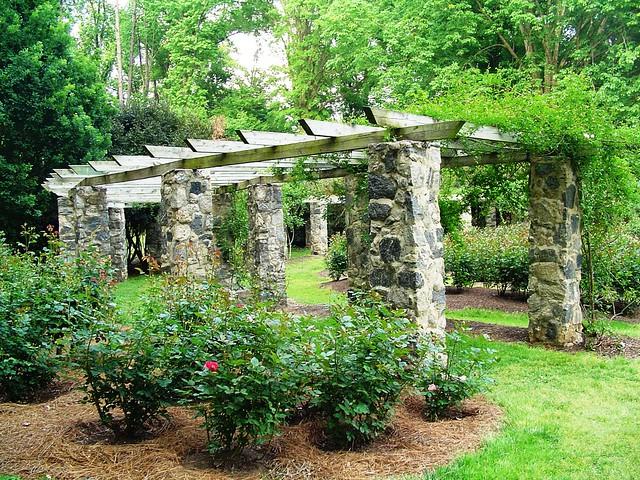 Raleigh little theatre rose garden raleigh durham tripomatic for Raleigh little theater rose garden