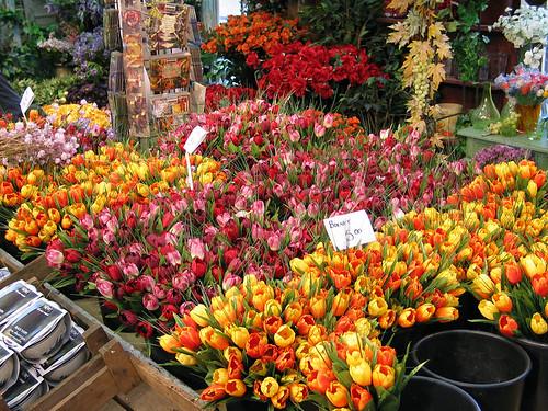 flowers in an Amsterdam street market