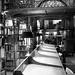Andrew White Reading Room - 5 -bw by DJOtaku