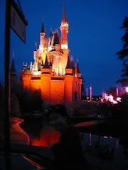 world, walt disney world, outdoor recreation, landmark, evening, night, amusement park,