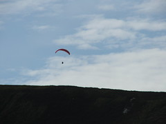 adventure, paragliding, parachute, air sports, sports, windsports, extreme sport, flight,