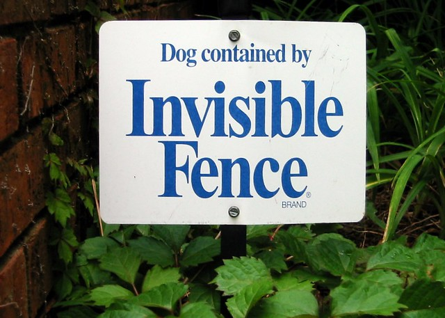 Wireless Invisible Dog Fence Reviews