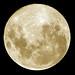 Full Moon in detail by Stephen Law