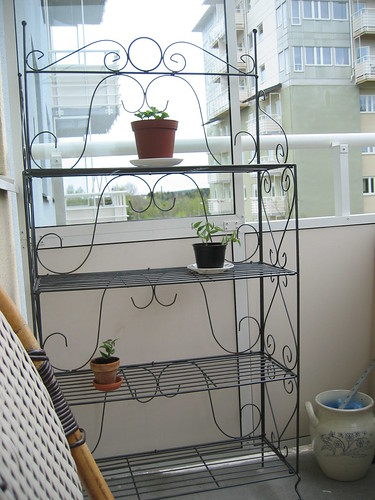 Shelf for the balcony
