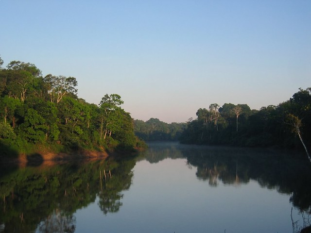 Morning in the Amazon - Flickr CC markgee6