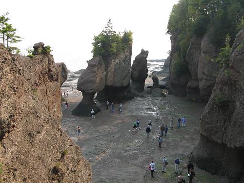 Flowerpot Rocks