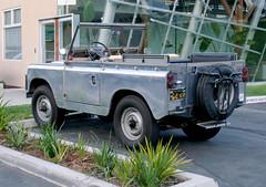 1962 Land Rover Series II - 3/4 Rear