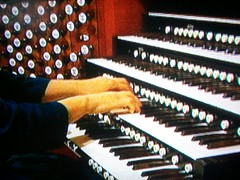 computer component(0.0), celesta(0.0), electronic device(0.0), nord electro(0.0), piano(0.0), electric piano(0.0), wind instrument(0.0), keyboard player(1.0), musician(1.0), musical keyboard(1.0), keyboard(1.0), electronic musical instrument(1.0), electronic keyboard(1.0), music workstation(1.0), organist(1.0), organ(1.0), electronic instrument(1.0),