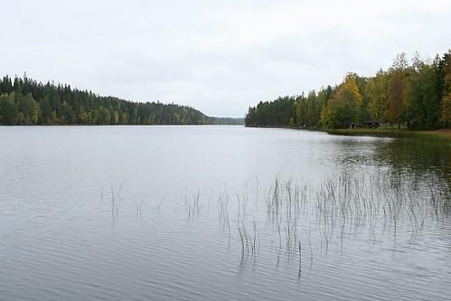 autumn lake fall suomi finland geotagged northerneurope psstandard tamron1750 hyytiälä geo:lon=24285197 geo:lat=61843686