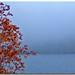 Dolce morbido autunno