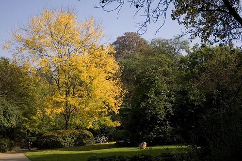 Tenbosch Park