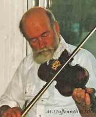 bowed string instrument, violinist, plucked string instruments, string instrument, violin, viola, fiddle, violist, string instrument,