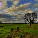 Simple Scottish Scene by Magdalen Green Photography