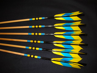 Champion's Arrows