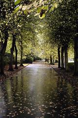 St. Stephen's Green Park in Dublin