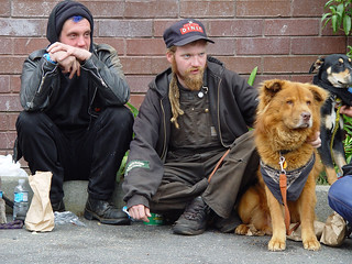 Homeless guys with dogs