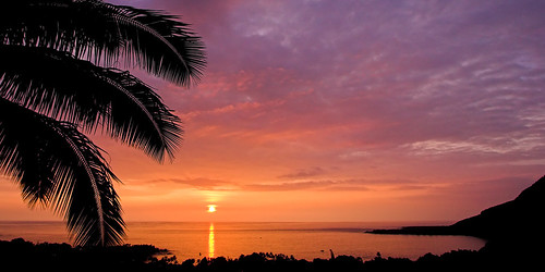 sunset silhouette hawaii bigisland kona fronds coconutpalm kealakekuabay 30119