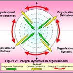 Integral dynamics in organisations