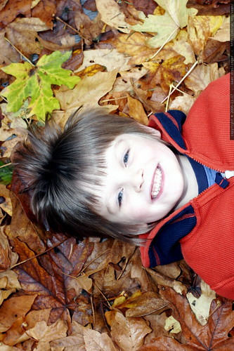 nick on a bed of leaves    MG 5726