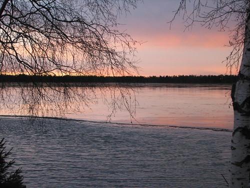 november trees winter red sky lake ice water suomi finland scenery oulu talvi maisema vesi järvi jää punainen puut taivas kuivasjärvi marraskuu betterthangood