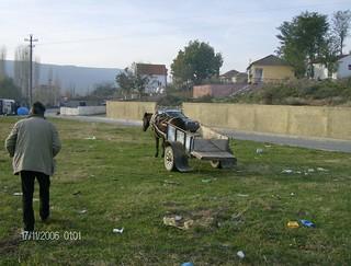 17-11-06 shkoder shqiperi
