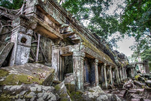 Ta Prohm Temple - Angkor | Siem Reap