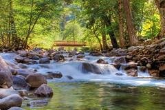 Afternoon Creek