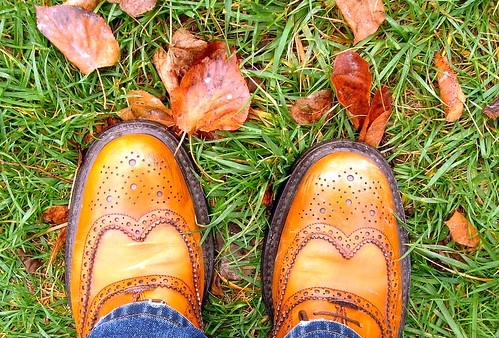 Autumn at my Feet