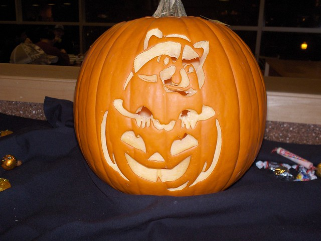 Raccoon pumpkin flickr photo sharing