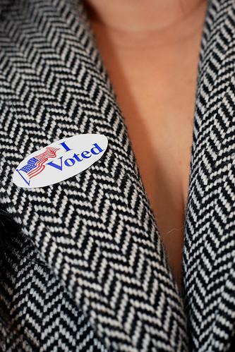 Day 27 - I Voted!