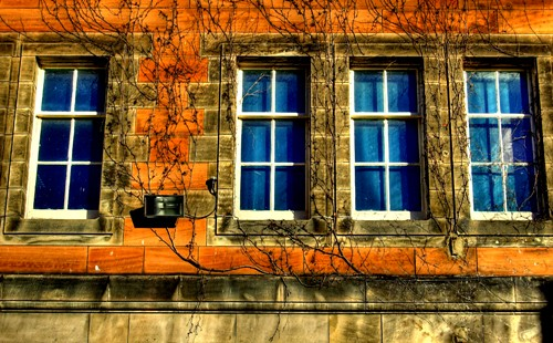 Windows of Learning ?