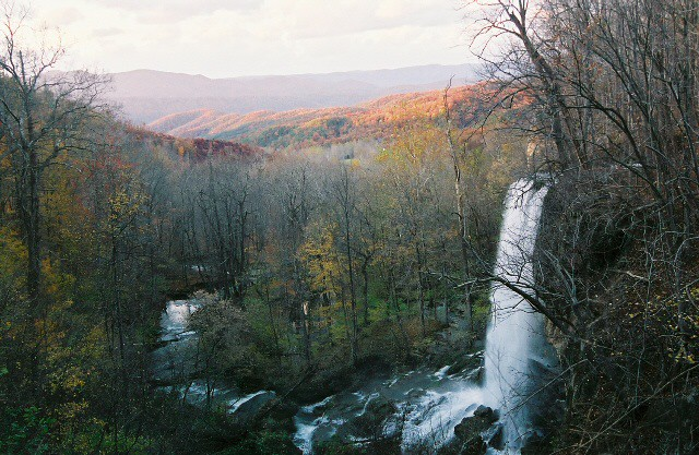 Header of Alleghany County