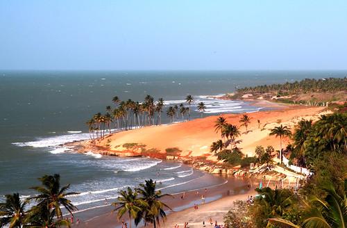 ocean sea brazil hot tree beach water brasil geotagged coast seaside sand surf coconut ceará nordeste praiadalagoinha geolat3345409 geolon39133816