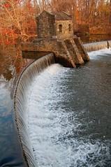 Speedwell Dam Late Fall