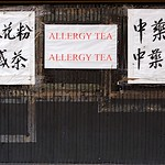 Allergy Tea Allergy Tea