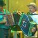 concertinas by Ana Pinta