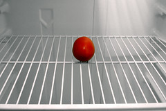 refrigerator, empty but for one plum
