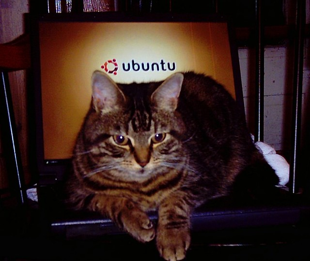 Ubuntu: Linux for Cats