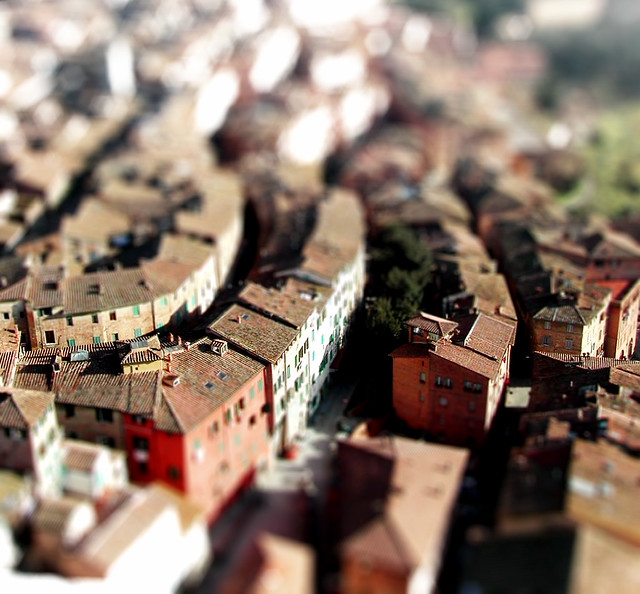 roofs from above