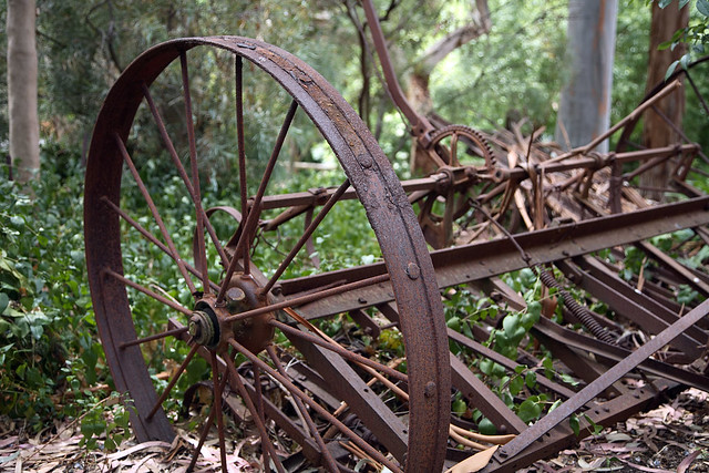Rusty metal thing, for Alison