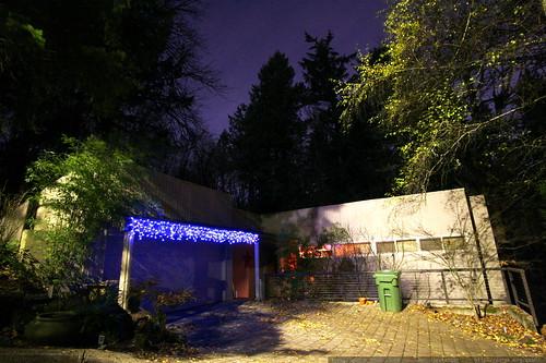 blue xmas lights    MG 6351