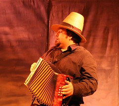 accordion, folk instrument, performing arts, music, wind instrument,