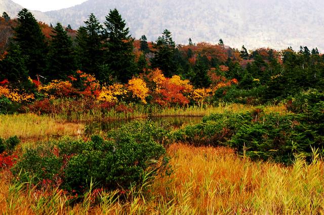 Photo:Hakkoda - 八甲田山 By:shin--k