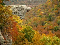 Hawksbill Crag and Buffalo River