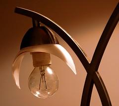 sconce(0.0), ceiling fan(0.0), ceiling(0.0), lamp(1.0), incandescent light bulb(1.0), light fixture(1.0), light(1.0), glass(1.0), lighting(1.0),