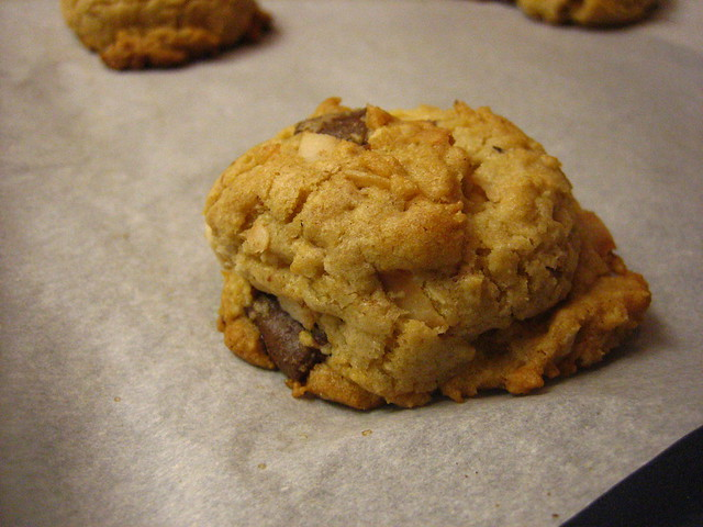 oatmeal-coconut-chocolate-chunk cookie | it doesn't look sup ...