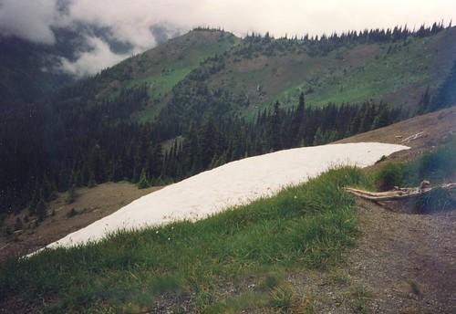 Olympia National Park - snow field