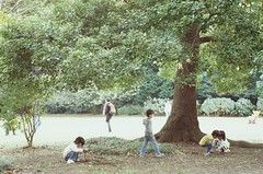 Chirdren under big tree